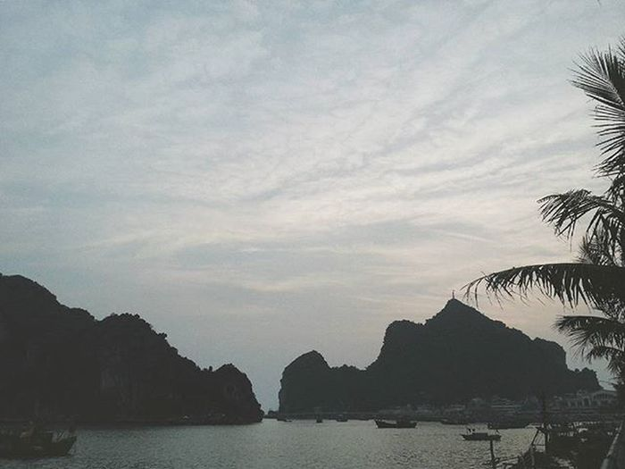 Sunset is Beautiful . Yesterday Throwback Instadaily Landscape Landscapephotography Halong Halongbay Photography Photooftheday Photographer