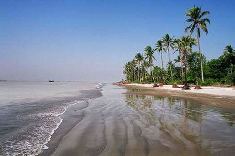 Beauty of bangladesh Palm Tree Beach Travel Destinations Tropical Climate Vacations Travel Water Sea Tourism Nature Sand Tourist Resort Landscape Outdoors Tree Beauty In Nature Eco Tourism Sky No People Day