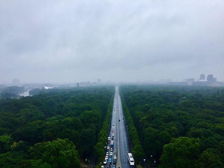 Berlin Cityscape Outdoors City Road Tree High Angle View Iphone6 Tree City Road Sky No People Art Is Everywhere WOW