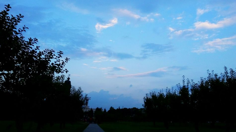 Sky Sky And Clouds Moscow Russia Nature Park Lendscapephotography