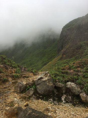 Dominica Valley Of Desolation Beauty In Nature Day Fog Landscape Mist Mountain Nature No People Outdoors Rock - Object Scenics Sky Tranquil Scene Tranquility Tree Water Weather