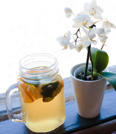Sangria Beauty In Nature Close-up Day Drinking Glass Flower Flower Head Food And Drink Fragility Freshness Glass - Material Healthy Eating Icetea Indoors  Jar Nature No People Table Vase
