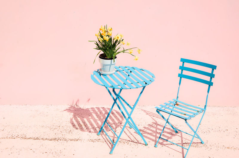 pink with table and chair & daffodils Absence Beach Beauty In Nature Chair Copy Space Day Empty Flower Flowering Plant Land Nature No People Outdoors Pink Color Plant Sand Seat Shadow Striped Wall - Building Feature Summer Exploratorium