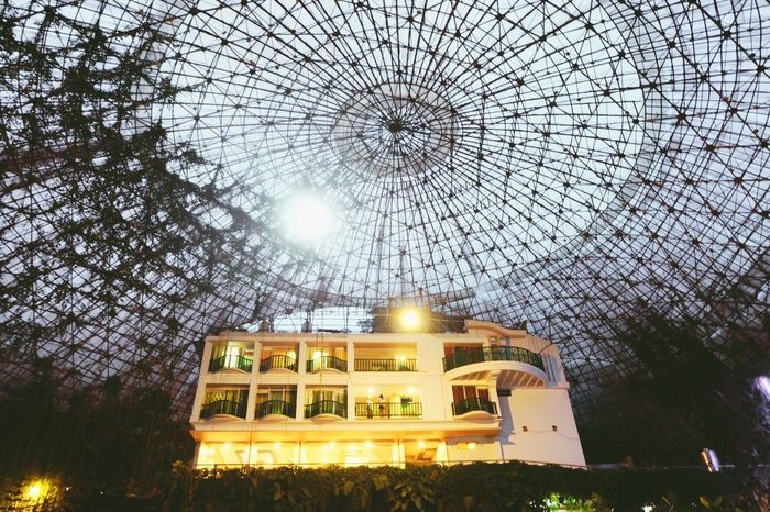 Sweet escape Hideaways Bamboosanctuary Hotelwithatwist Dome NatureArchitecture Low Angle View Built Structure Building Exterior No People Illuminated Sky Day Outdoors Tree EyeEm