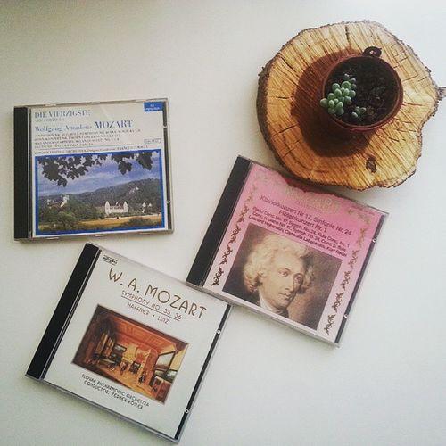 Kitaplarımı toplama girisimlerim tum senligi ile devam ederken, biraz muzik dinleyeyim dedim. Mozart ile dun gecenin uzerinden geciyoruz😊😁 Saraydankızkacırma kaseti bile var bende, Kasetkaldımı memlekette? Neyse -ach ich liebte, war so glucklich diyor Sanatçı .Bir de Almancafiilçekimleri Opéra dinlerken cok yardımcı oluyormus onu farkettim😝😂😊Geçmişzamanolurki Müzik Kitap Instadaily Tr_turkey Geçmişzamanolurki Instagram_turkey Turkishfollowers Music