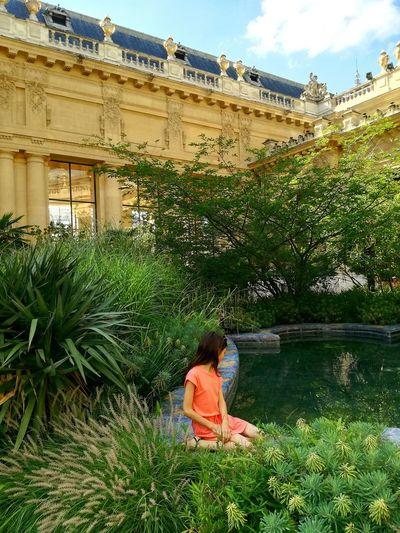 Travel Paris Petit Palais Grandpalais Jardin Garden Holidays Holidayssinparis Beauty In Nature Beautiful First Eyeem Photo
