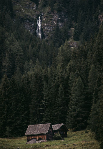 small barn house with waterfall in the baxkground Tree Plant Built Structure Architecture Mountain Land Nature Forest No People House Scenics - Nature Building Exterior Beauty In Nature Landscape Tranquility Building Environment Tranquil Scene Day Growth Outdoors Cottage Pine Tree Waterfall Countryside