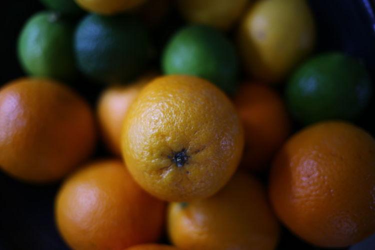 Close-up of oranges