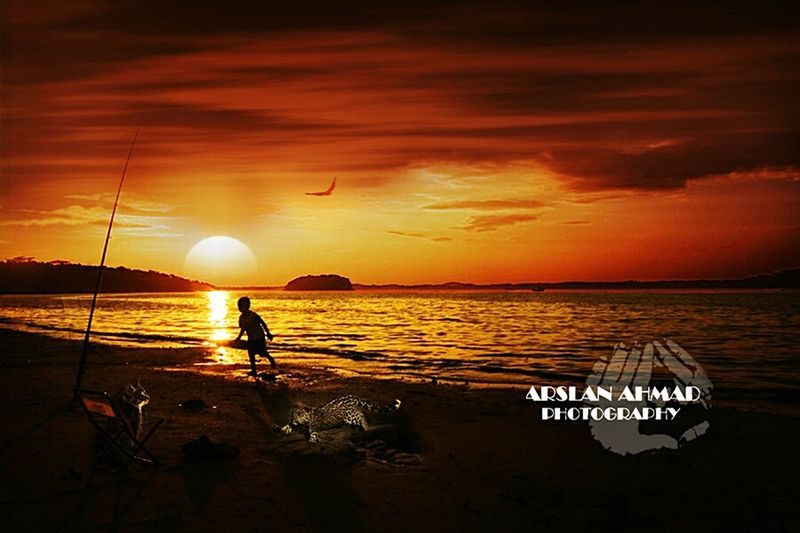 Drawn in the soul of rich soil.They posed in like asleep in the lap of nightSunset Sea Water Nature Night Feel The Moment Animal Wildlife Dramatic Sky Outdoors Beauty In Nature Cloud - Sky Sky Beach First Eyeem Photo