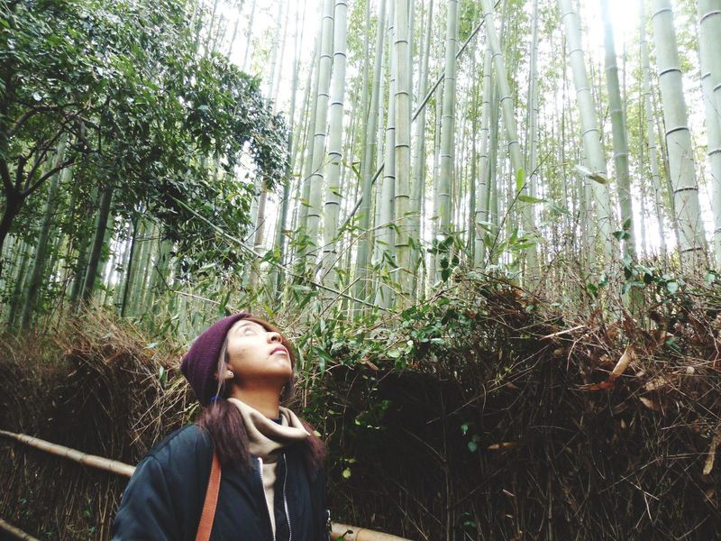Discovery Explorer Travel Japan Girl Kyoto,japan Bamboo Forest