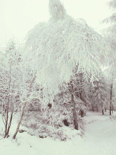 Bielsko-Biała Poland Winter