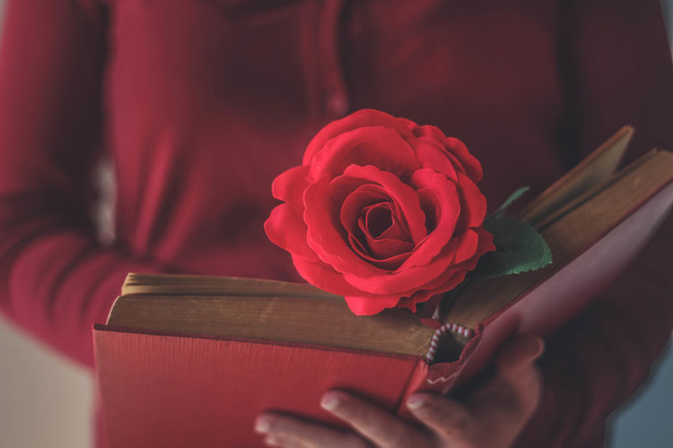 Close-up of a red rose on a book