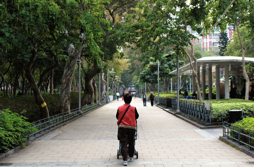 City Life Citygarden Day Footpath Garden HongKong Oldlady Outdoors Path The Way Forward Trees Walking
