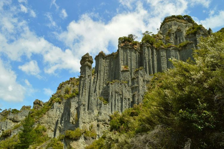 the mighty cliff faces of the pinnacles rise from the valley floor. 😮😮😊😊👆👆 Natural Beauty Great Outdoors Lookingup Rock Formation Nature Photography EyeEm Best Shots Hello World Nature Landscape New Zealand Scenery Taking Photos EyeEm Nature Lover Getting Inspired Check This Out Beautiful Nature Eye4photography  Nature_collection Adventure Time Walking Around EyeEm Best Edits Hiking Great View Kiwi Clicker Having Fun