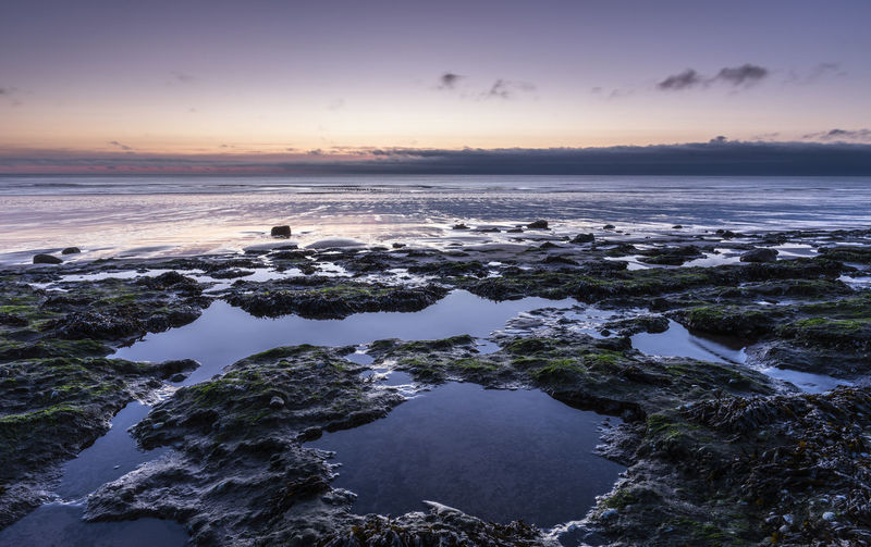 Rock pools at blue hour Blue Hour Cloud Dark Holiday Huế Peace Rock Seaweed Weather Beachphotography Coast Dusk Evening Rock Pool Room For Text Sea Seascape Shore Still Sunset Tide Tourism Uk Water Whitehaven