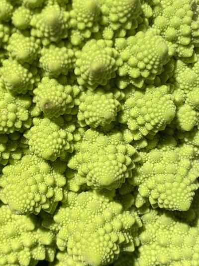 Fractals by