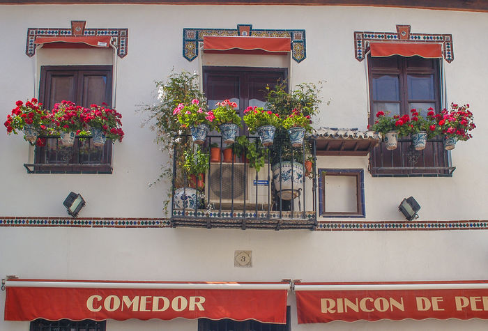 Architecture Building Exterior Built Structure Communication Day Flower Growth Low Angle View Mediterranean  Nature No People Outdoors Plant Potted Plant Red Red Flower SPAIN Text Travel Destinations Travel Photography Window Box