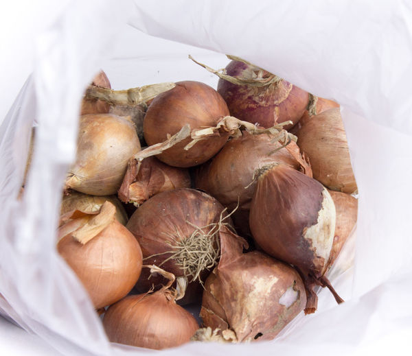 View Of Onions In Plastic Bag