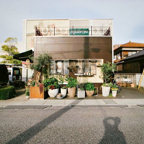 Holiday City Life Day Building Outdoors Architecture The Architect - 2016 EyeEm Awards Road Sunlight City Sky Plant Plants Sunny Flower Shop Japan Street Shadow Silhouette The Shop Around The Corner Found On The Roll Ultimate Japan Mobile Conversations