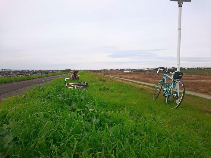 向風に負けそうになりながら江戸川を上ってきました。38kmポスト