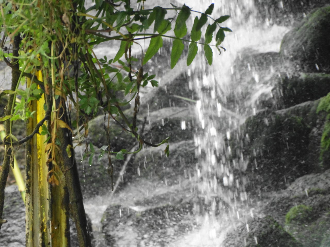 waterfall, motion, water, nature, no people, beauty in nature, tree, forest, outdoors, day, scenics, power in nature, freshness