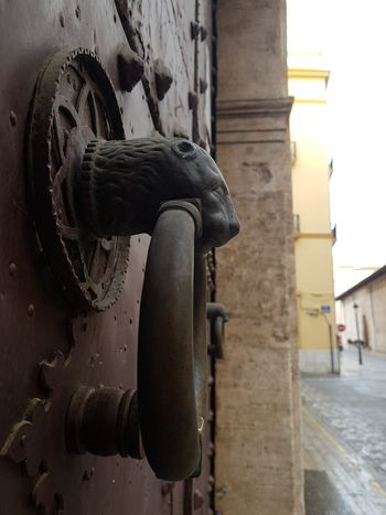 Water City Door Close-up Architecture Building Exterior Built Structure Historic Lion - Feline Door Knocker Lioness