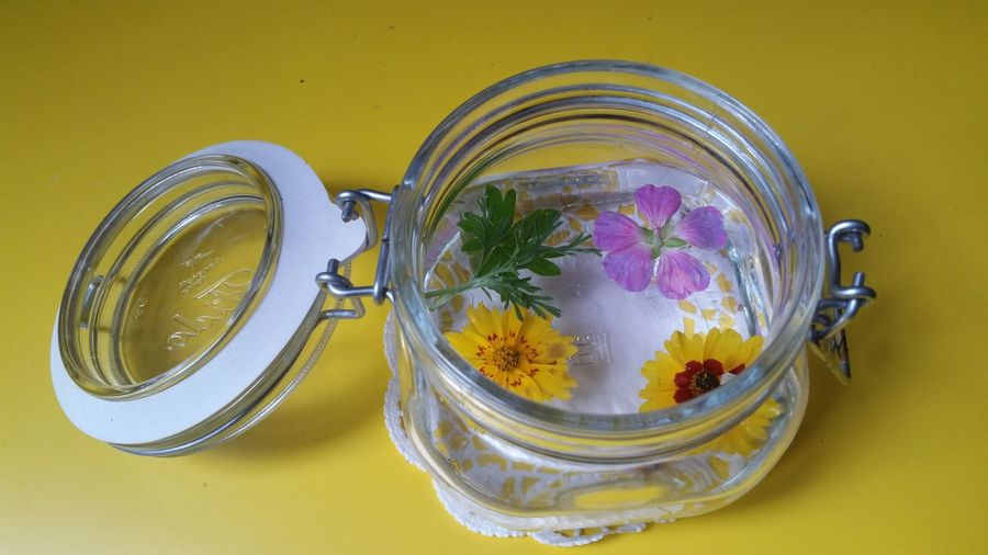 flowers in a glass - Blumenköpfe in einem Glas Decorative Dekorationsidee Blumen Und Pflanzen Blumenfoto Blumenköpfe Einmachgläser Simplicity Einfachheit EyeEm Selects Water Yellow Jar Herb Colored Background Close-up