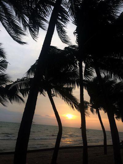 Beach Sunset Thailand_allshots Nature