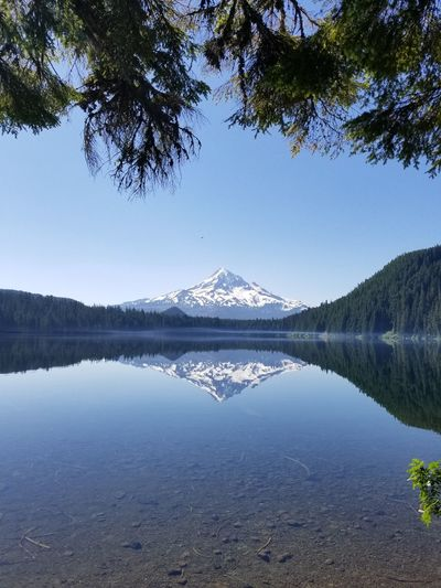 Been There. Lost Lake Pacific Northwest  Camping In Oregon Mt Hood Reflections Lost Lake Resort Oregon Mountains Majestic Mountain Majestic Reflections Colour Your Horizn