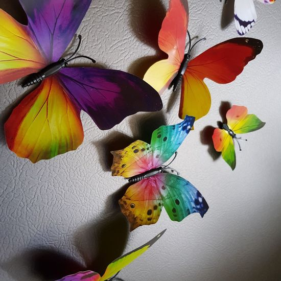 Abstract Beauty In Nature Fragility Painted Image Art And Craft Multi Colored Butterfly - Insect Paint Watercolor Painting No People Indoors  Nature