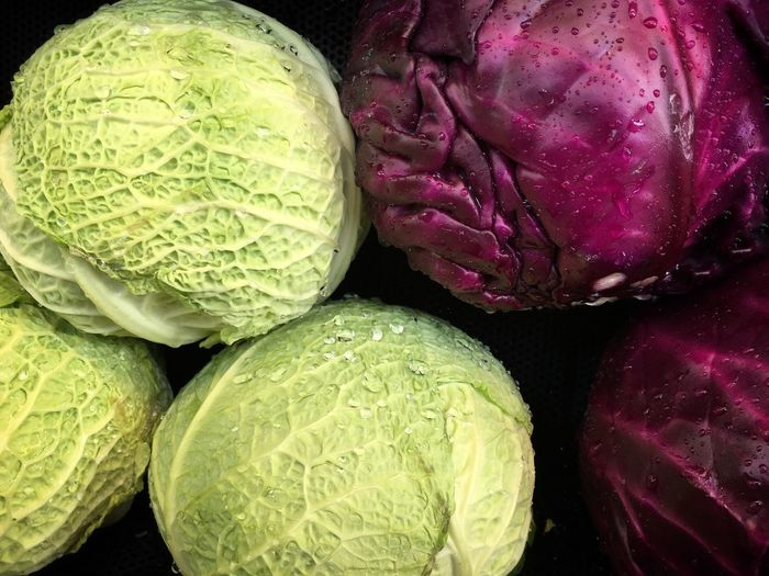 Food And Drink Freshness Vegetable Full Frame Vibrant Color Cabbage High Angle View Abundance Organic Close-up Market Stall Greenandpurple Complementary Colors