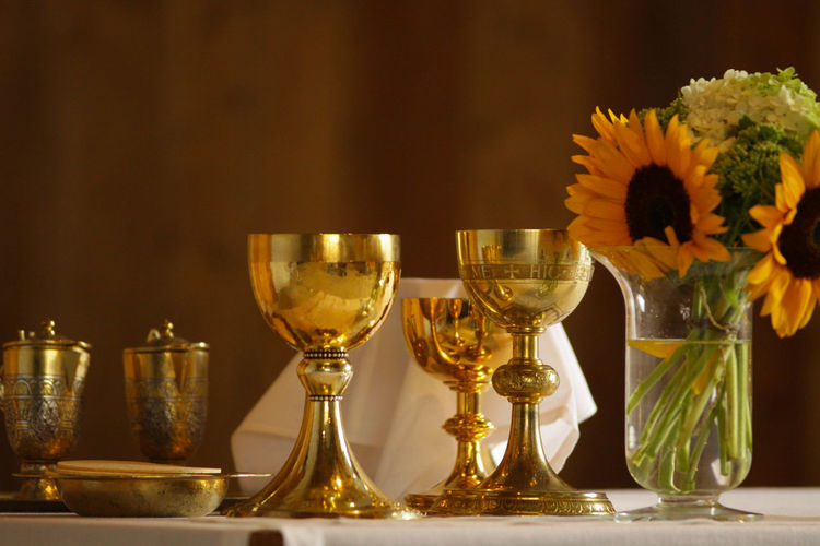 Catholic Gold Sunflower Close-up Flower Holy Mass Krebserösch Sunflowers Vessels