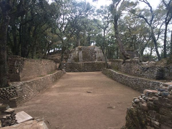 Ancient Architecture Built Structure Day Deterioration Growth History Nature No People Old Old Ruin Outdoors Sierra Gorda, Queretaro Sky Stone Material The Past The Way Forward Toluquilla Tourism Tranquility Travel Destinations Tree