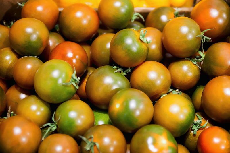Full frame shot of unripe tomatoes