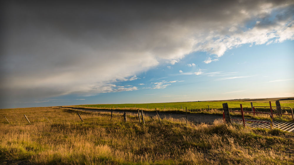 The Calm Before The Storm Iceland Travel Photography Beauty In Nature Boundary Cloud - Sky Environment Fence Field Grass Land Landscape Nature No People Outdoors Rural Scene Scenics - Nature Sky Tranquil Scene Tranquility Travel Destinations