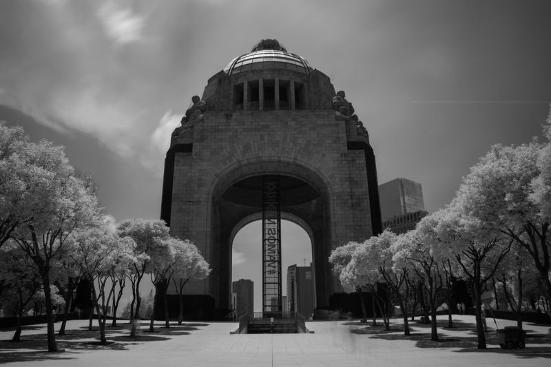 Infrared Photo n.2 Black & White Blackandwhite Trees Sky Infrared Day Politics And Government City Tree Architectural Column Arch History Architecture Sky Dome The Traveler - 2018 EyeEm Awards