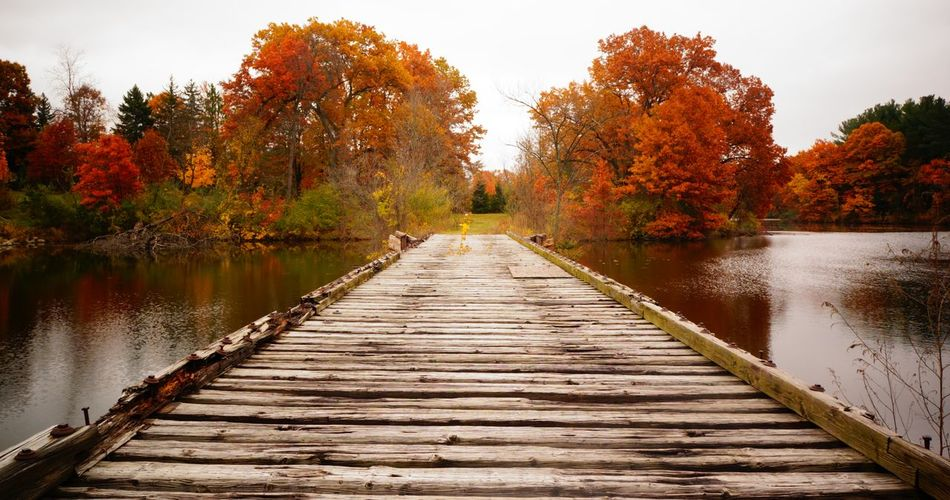 Autumn Beauty In Nature Day Lake Landscape Leading Lines Nature No People Outdoors Perspective Reflection Scenics Sky Train Tracks Tranquil Scene Tranquility Tree Water Wooden