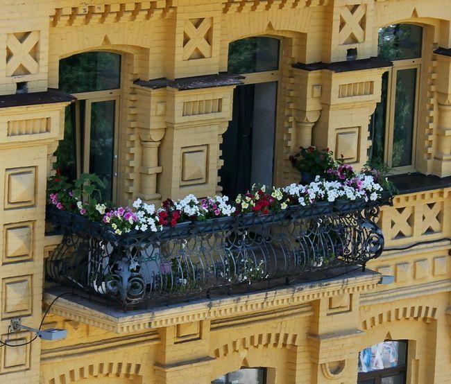 Ukraine Kyiv Architecture Window Balcony Flowers Photo Canon