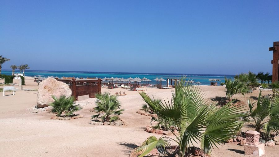 Ägypten Red Sea Marsa Alam