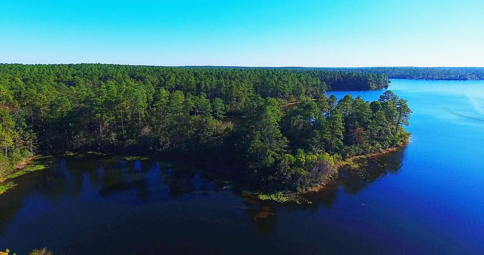 Water Beauty In Nature Nature Clear Sky Outdoors Lake Tree Tranquil Scene Aerial Alabama