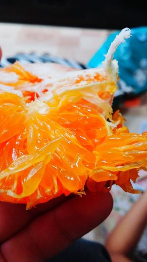 레드향 Tangerine