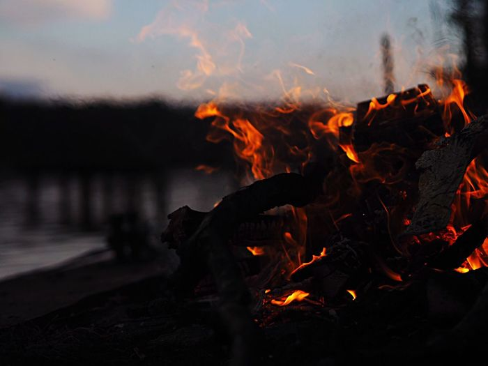 Close-up of burning bonfire during sunset