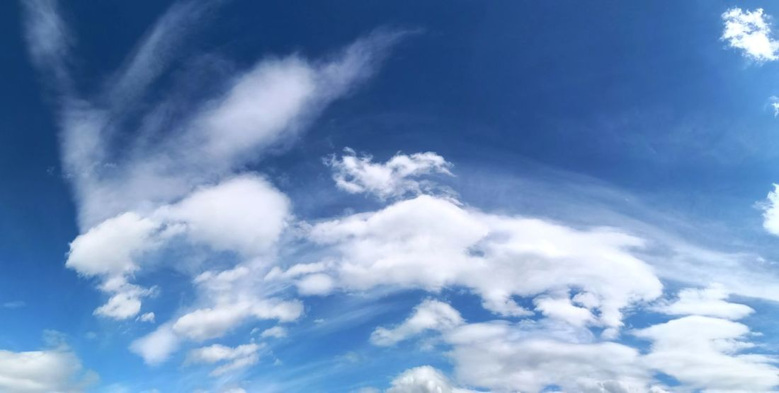 Cloudscape and blue sky Pristine Beauty Pristine Air Clouds Background Clouds Photography Clouds Panorama Clouds Panoramic View Harz Harz Mountains, Germany Flying Blue Backgrounds Sky Only Space Beauty Weather Wind Sky Cloud - Sky Cumulus Cloud Meteorology Fluffy Cumulonimbus Heaven Climate Cloudscape Cirrus Stratosphere Wispy Cumulus Cyclone