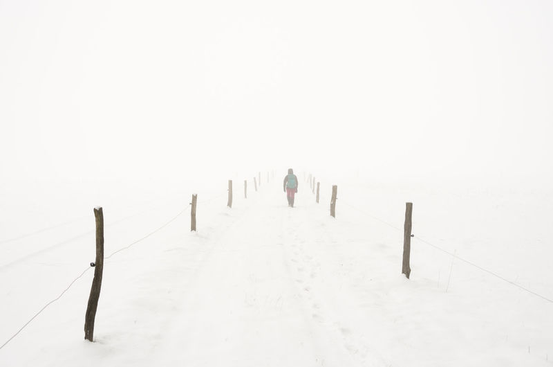 Rear view of person on snow covered field