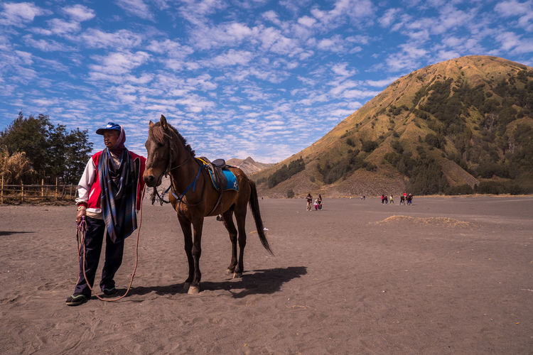 People riding horses on land against sky