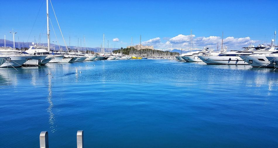 Boats moored at harbor against blue sky