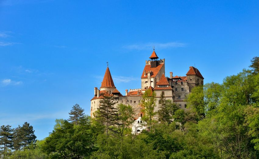 Low angle view of trees and bran castle against blue sky