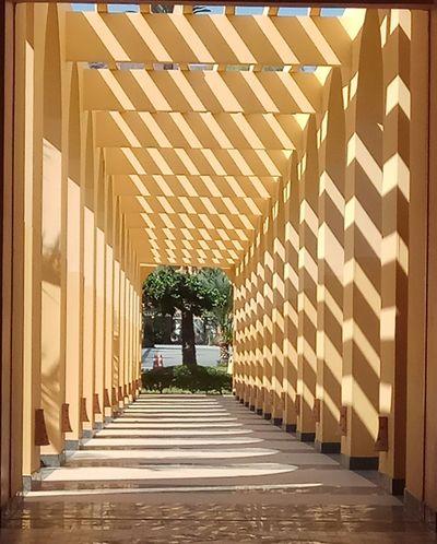Sinai City Politics And Government Architecture