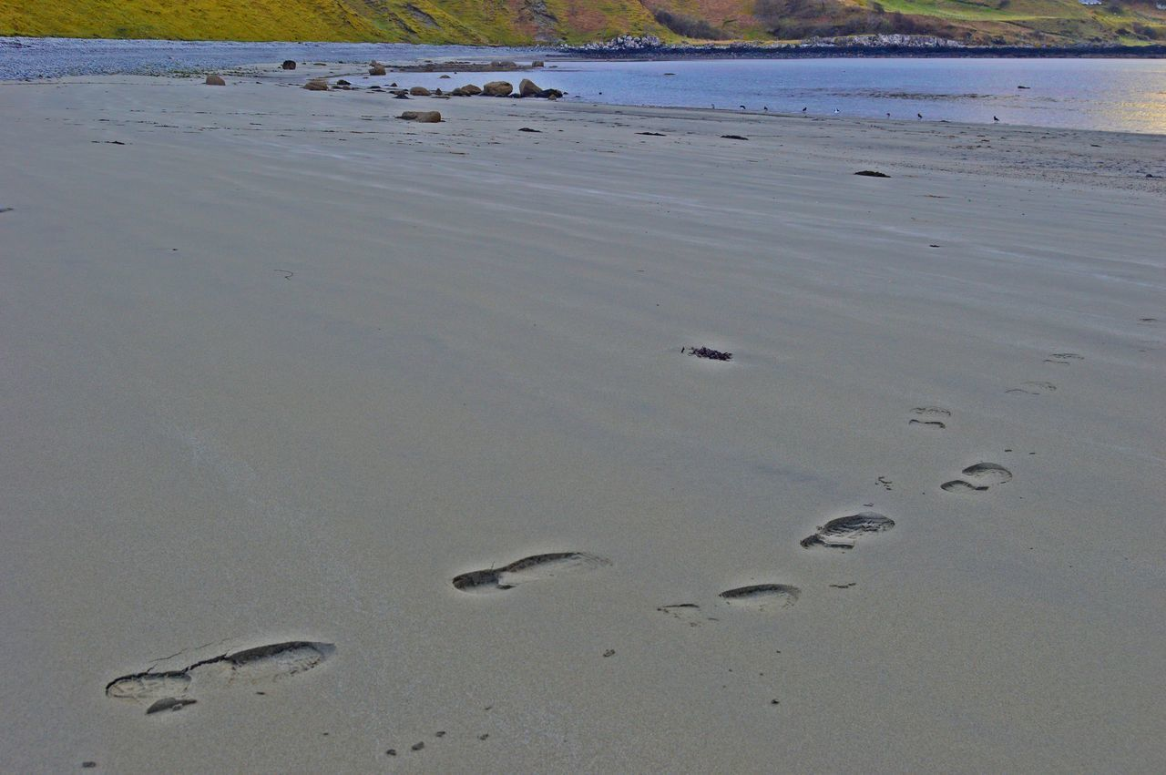 HIGH ANGLE VIEW OF FOOTPRINTS ON WET BEACH
