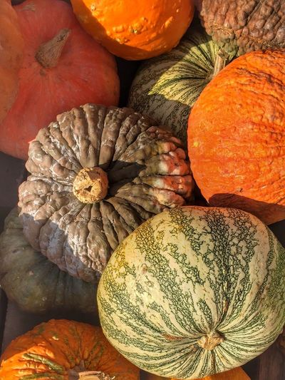 HAPPY THANKSGIVING TO ALL AMERICAN FRIENDS, Abundance Close-up Detail Food Food And Drink Freshness Full Frame Healthy Eating Hello World Pumpkin Ripe Still Life Taking Photos Variation Vegetable IPS2016Closeup